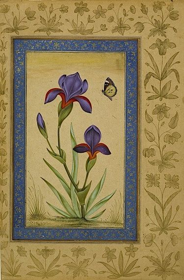 From the Asian and African studies blog post 'A Mughal Flower Show'. Image: A blue iris and a butterfly (Add.Or.3129, f 41v).