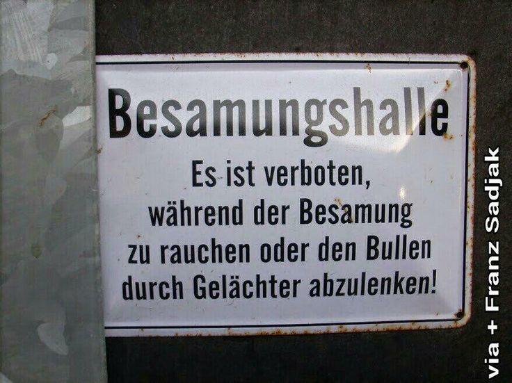 Bitte nicht lachen. Lenkt den Bullen ab... via @Frechgeist // Twitter