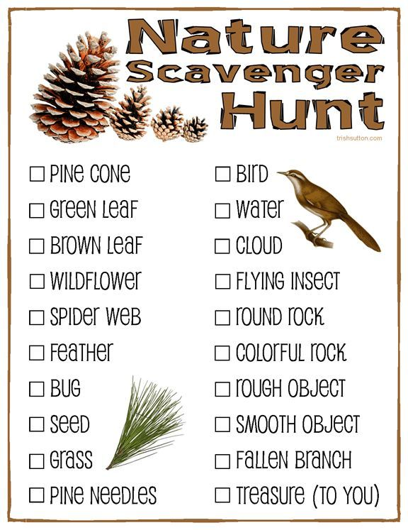Nature Scavenger Hunt; Campers, Camping & Camp Retreats! Free Printable for kids.