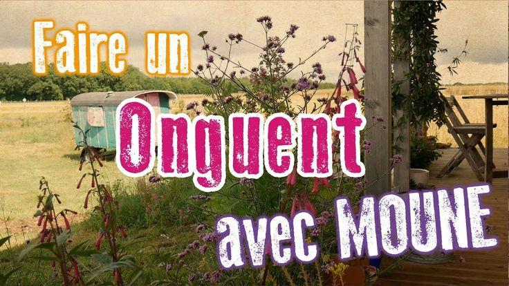 Les recettes de Moune : ONGUENT ANTI-RIDES AU SOUCI ET AU PLANTAIN ...