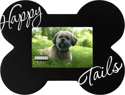 "Malden International Designs ""Happy Tails"" Dog Picture Frame, 4 x 6 inches - Chewy.com"