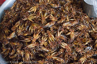 Fried crickets, for sale at the market in Skuon (Cambodia)