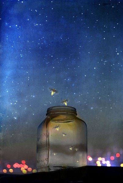 Lightning Bugs, this reminds me of being a little girl collecting lightening bugs on a warm Kansas night.