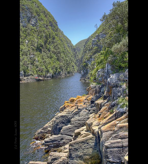 Tsitsikamma National Park . South Africa