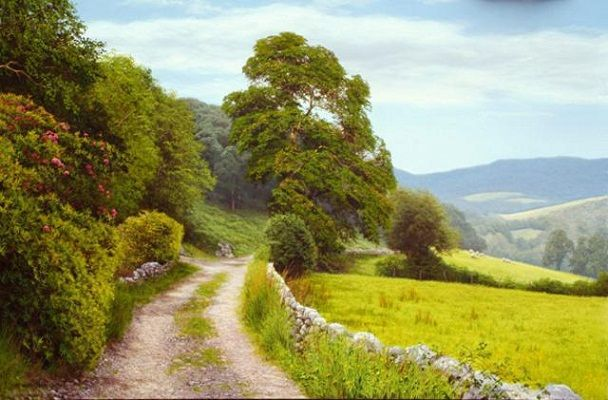 Landscape oil paintings by british artist michael james for Michael james smith paintings