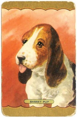 Vintage Coles Swap Playing Card X 1 Named Basset PUP | eBay