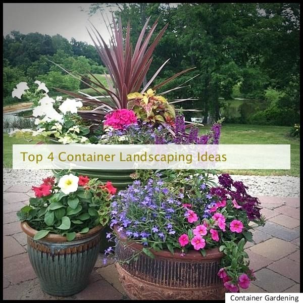 Container Landscaping Design, Container Back yard Ideas, Container