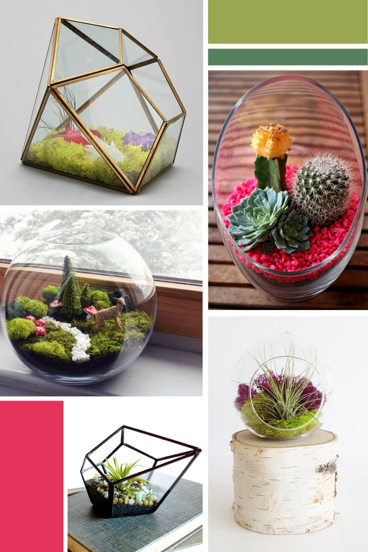 5 Terrariums for Your Home or Office DIY Projects