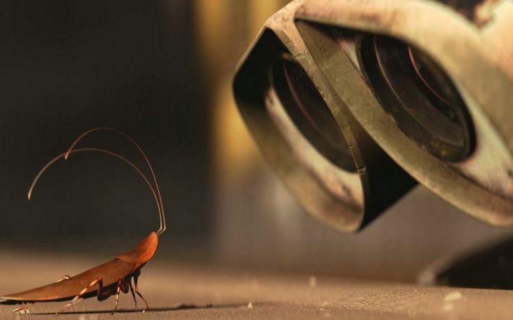 Скачать обои в разрешении 2560x1600 коричневый, робот, валли, таракан, Мультфильмы, Обои Валли увидел таракана пикс.