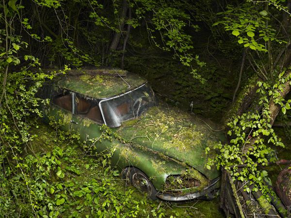 Paradise Parking Peter Lippmann. Photos of abandoned cars in a state of complete decay.
