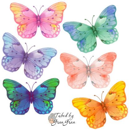 Mariposas Vistosas