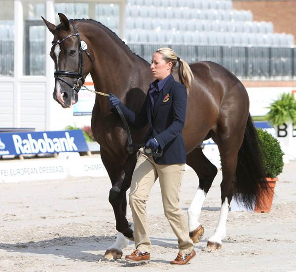 Charlotte DuJardin - Valegro 9T5U9285 wearing an IR trot up bridle with red, white and blue diamontes and patent noseband