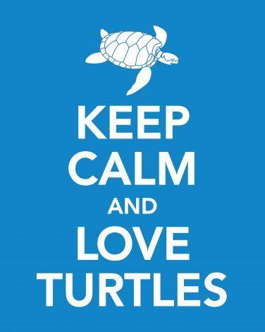 Keep Calm and Love Turtles Print