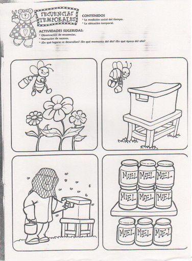Wat is de goede volgorde, thema bijen / SECUENCIAS TEMPORALES