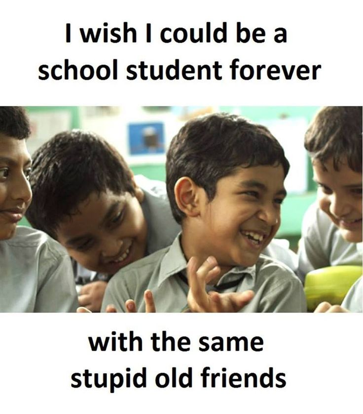 I Wish I Could be a school student forever with the same stupid old friends