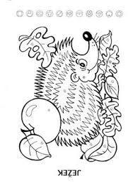 Výsledek obrázku pro obrázky omalovánky ježci