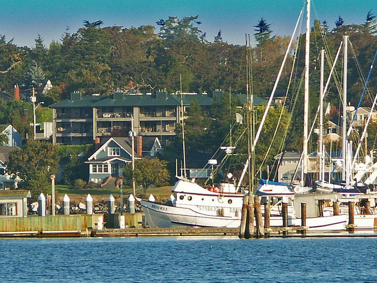 25+ trending Oak harbor wa ideas on Pinterest | Oak harbor ...