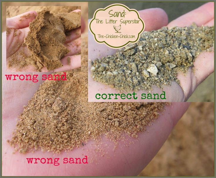 Washed, construction grade sand is a better litter choice for the coop and run than play sand. Manufactured sand should never be used as chicken litter.