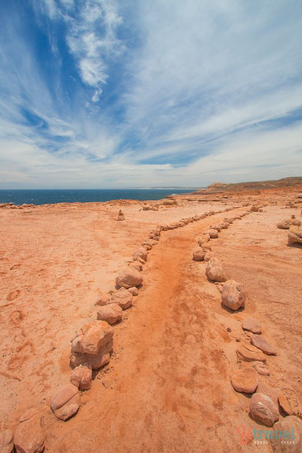 Hiking the coastal section of Kalbarri National Park in Western Australia today, near Red Bluff.