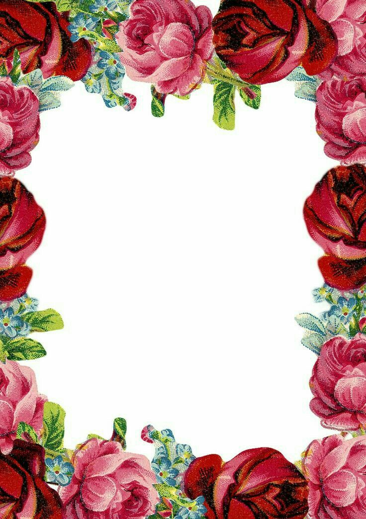 1509 Best Frames Amp Backgrounds Images On Pinterest Paper Clip Art And Leaves