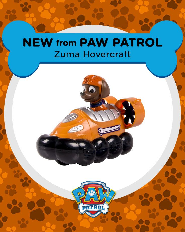 It's a PAW Patrol Zuma racer, dude!!