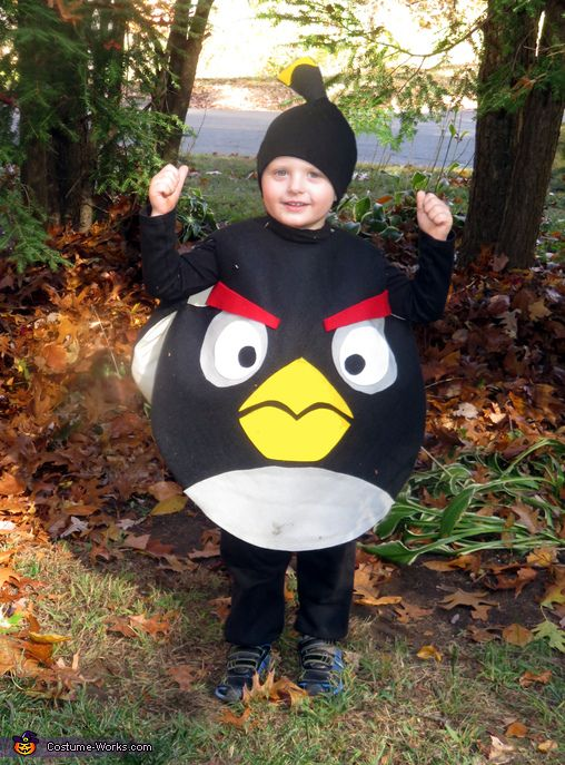 Carol: My 3 year old grandson is obsessed with Angry Birds and his favorite one is the black bomb. So, of course, when I asked him what costume he wanted me...