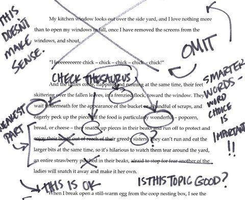 Essay Hook Example Santa Cruz Sentinel