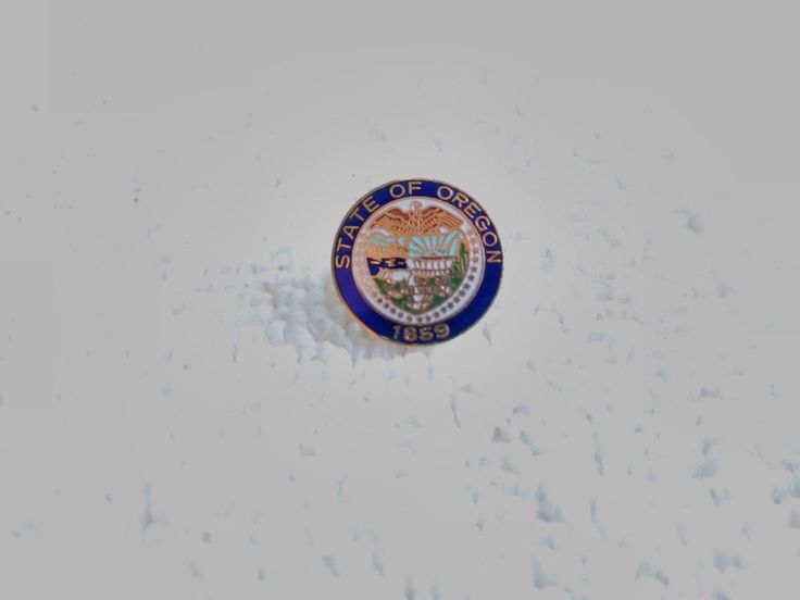 Vintage United States Oregon State Seal pin badge