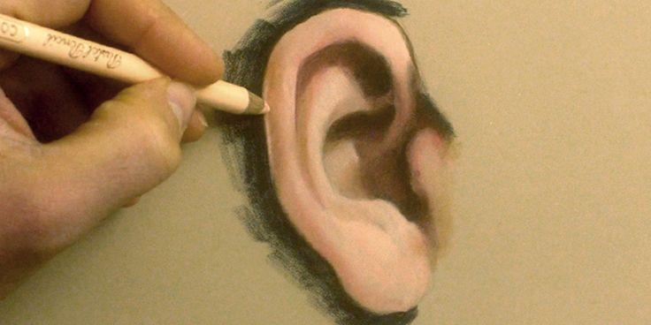 Nouveau tuto dans lequel je vous montre la particularité anatomique de l'oreille et la technique du crayon pastel pour la mise en couleur ;)