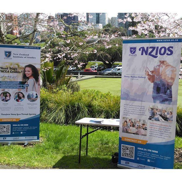 【nziosjapan】さんのInstagramをピンしています。 《もっとスタッフ必要だったorz  #留学 #英語 #ニュージーランド #オークランド #ワーホリ #Auckland #NewZealand #English #NCEA #business #ビジネス #Diploma #ディプロマ #IELTS #正規 #留学 #花見 #桜》