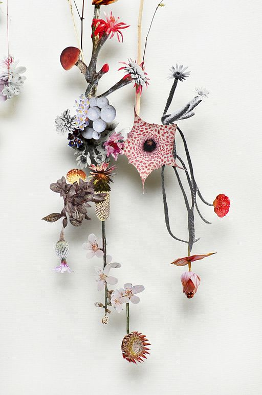 Anne Ten Donkelaar's flower constructions are 3d collages from pressed flowers and cut out flower pictures. Each element is meticulously placed on pins which creates the depth. Some of them are like a fantasy Herbaria, filled with dried flowers or branches, with irregular shapes and sophisticated twists and some refer to planets.