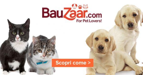 Il benessere del tuo amico a 4 zampe passa dal cibo, scopri su #Bauzaar  la pappa più adatta a lui! #ForPetLovers #ad