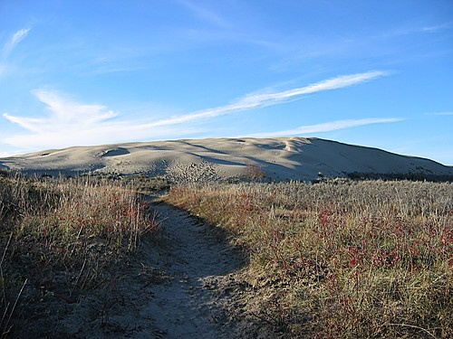 Great Sand Hills, Saskatchewan.