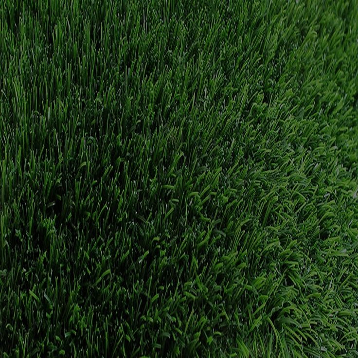 SBR latex backing artificial grass door mats grass in India u2013 Top-Joy International Trading (Shanghai) Co.  sc 1 st  Pinterest & 105 best Reasons to buy synthetic grass images on Pinterest ...
