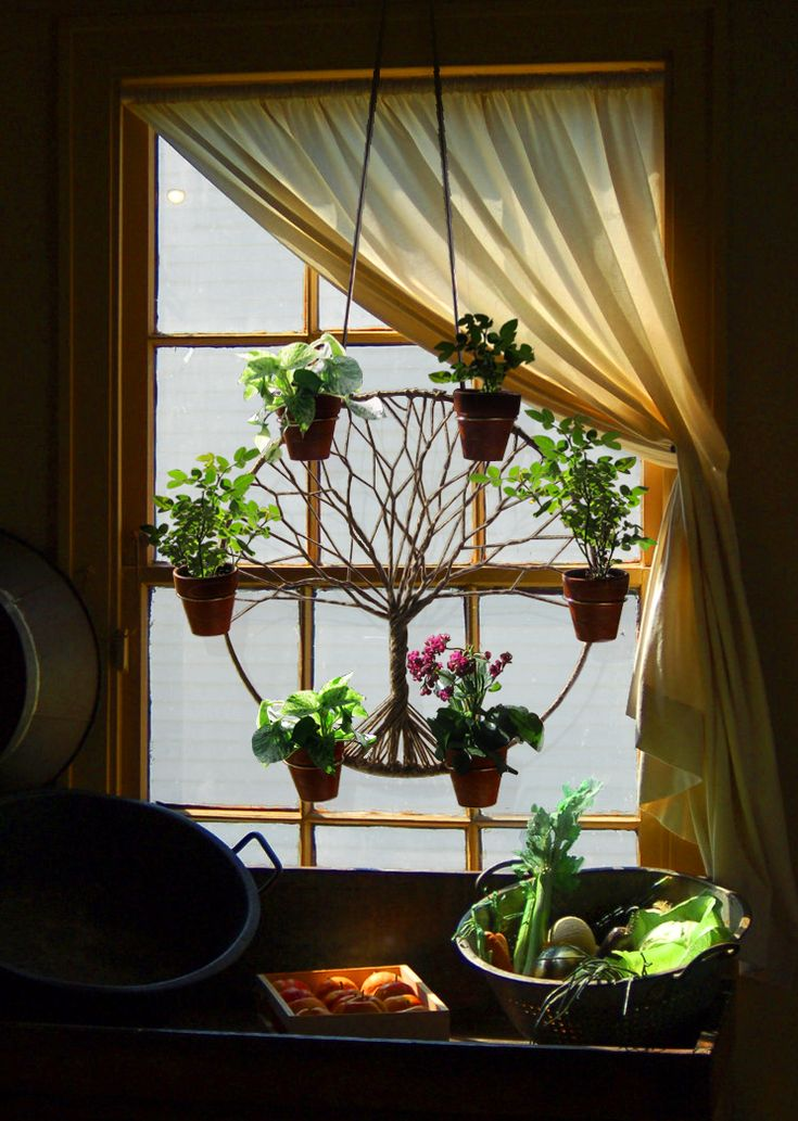 Bohemian Decor Plan Hanger in window Plants Succulents Cactus