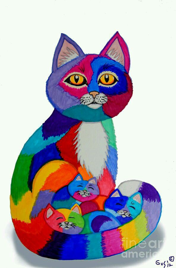 Pin by Laurilyn Harris on Kaleidoscope Colors Kitten