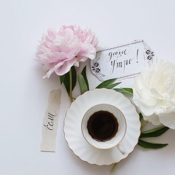Если Вы не идёте в Инстаграм, то Инстаграм идёт к Вам! http://instagram.com/n_a_l_i_v_k_a Много добрыхУтр, кофе, цветов и рисовальни. Август прошёл, начинаем сентябрить. То ли ещё…