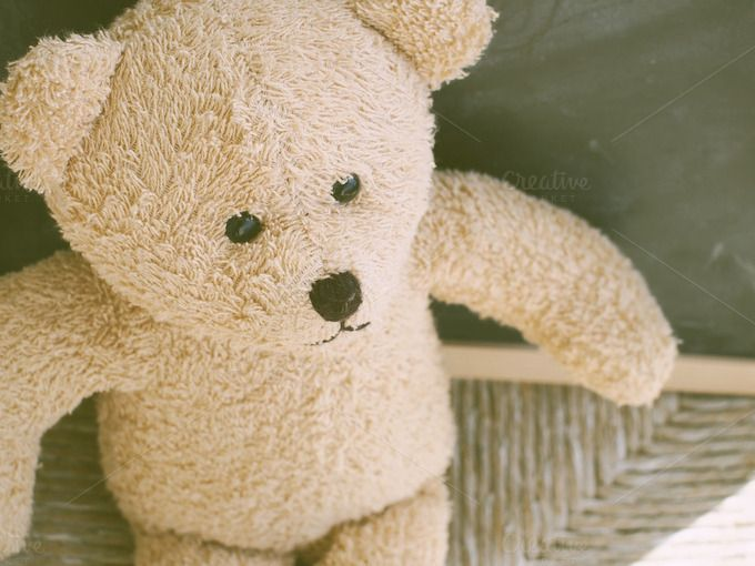 Teddy bear by Life Morning Photography on Creative Market