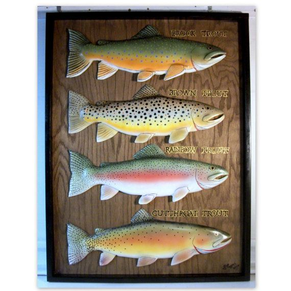 Brown Brook Rainbow Cutthroat Trout Wood Carvings