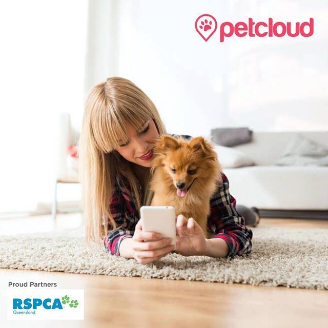 Pet Sitting Dog Walking Petcloud Post A Pet Job On Petcloud S Pet Jobs Board Pet Sitters Dog Walking Pets