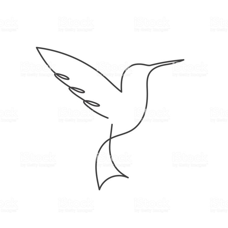 Continuous line bird. Black and white vector illustration. One line… – Shane Turlington
