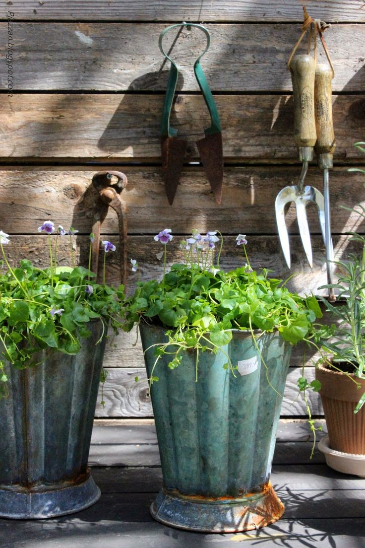 Garden Pots Best 2097 Odd Planters Garden Pots Images On Pinterest Gardening