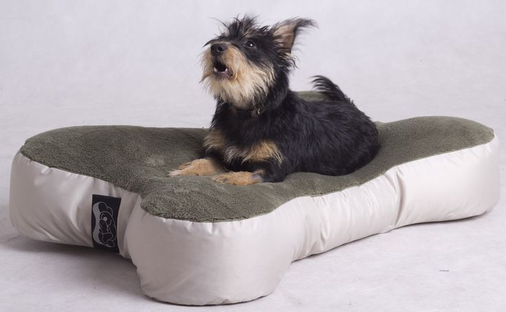Tried and tested beanbag served as a base idea, since it is practical, cozy, durable and gives a luxury feel to our puppy. This is the comfort and convenience we want for all pets to feel.   This luxury item is hand made and can be personalized with your loved one's name on the side. Currently available in one size which corresponds from the smallest breed to the medium-sized puppies.  Bed length 80 cm, width: 56 cm, height: 15 cm