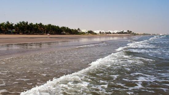 Spiaggia con oasi di palme