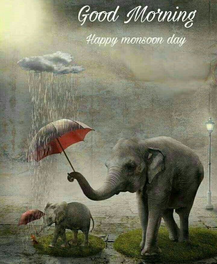 Pin By Johnnyred On Go D M Rning Good Morning Quotes Good Night I Love You Dancing In The Rain