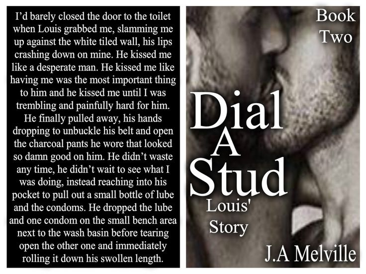 Now I'm finished writing Dial A Stud, Louis' Story, here's another teaser from it.