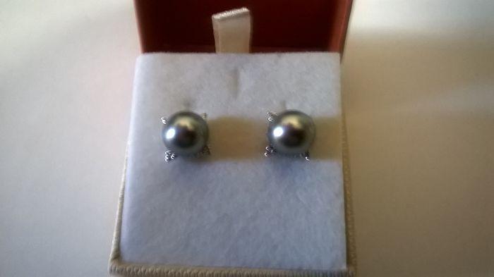 Oorbellen met Tahitiaanse parels 9 mm en 008 ct briljant-cut diamanten  Nieuwe oorbellen in 18 kt wit goud Set met 2 Tahitiaanse parels meten van elke 9 mm en een totaal van 008 ct van briljante-cut diamant G VS1 zoals aangegeven door de fabrikant. Het totale gewicht is 4.70 g. De parels werden gecultiveerd in zout water en zijn grijs gekleurd. Ze worden verzonden in een geval met behulp van verzekerde verzending van Catawiki  EUR 1.00  Meer informatie