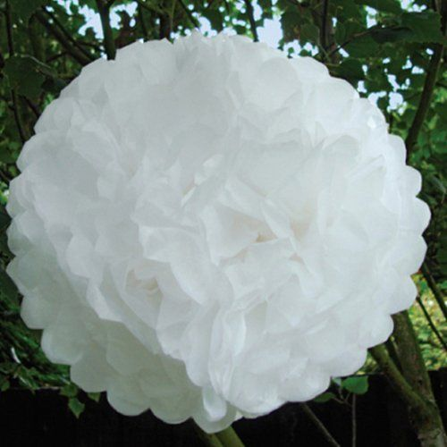 White Tissue Paper Christmas or Wedding Pom Poms - PKT 10 by Pink Butter, http://www.amazon.co.uk/dp/B00BBXCT8G/ref=cm_sw_r_pi_dp_BX6etb060HW9H