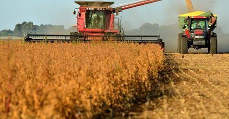 RS Notícias: Argentina facilita exportação de soja, carne, milh...