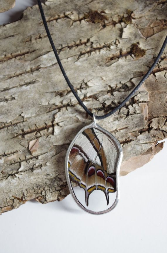 This pendant is made using a real butterfly wing. This amazing butterfly has rich colours with an unusual double tail. The pendant is around